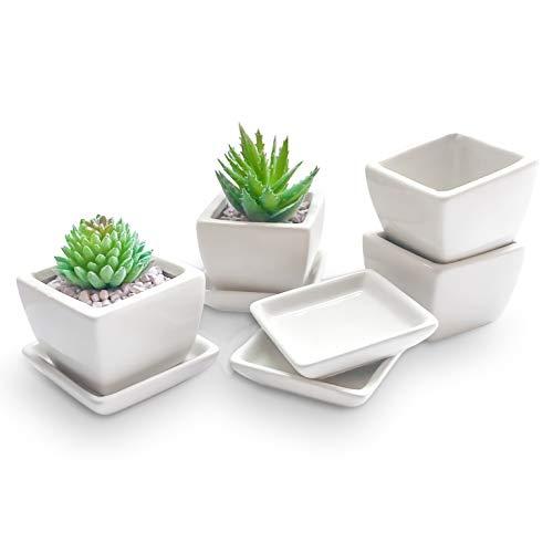 Ligano® Sukkulenten Töpfe aus Keramik mit Untersetzer – Weiße Blumentöpfe für Zierpflanzen – 4er Set