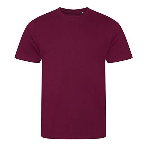 Ecologie Herren T-Shirt Cascades (M) (Burgunder)