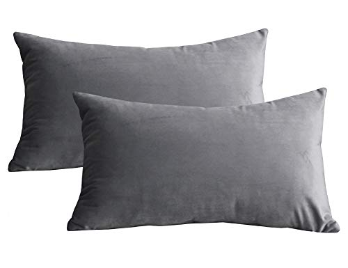 Lutanky Velvet Cushion Covers (Pack of 2) Lovely Rectangle Throw Pillow Cases Soft Solid Decorative Pillow Covers for Sofa Bedroom Car 12x20 Inch 30 x 50 cm (light grey, 2 pieces)