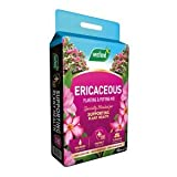 Westland Ericaceous Planting & Potting Mix 10L