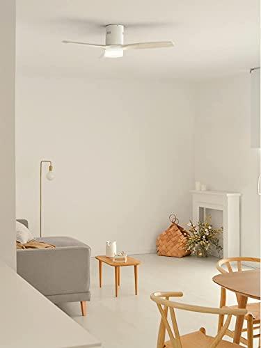 IKOHS Ventiladores para el techo con lámpara