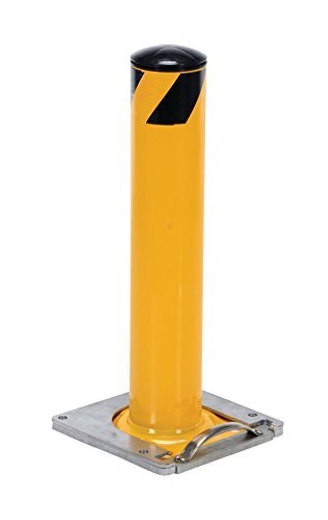 影響を受けやすいですでるセクションVestil BOL-RF-24-5.5 Surface Mounted Removable Steel Pipe Safety Bollard,5-1/2