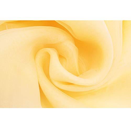 PXC 10M Pfirsich Farbe Sheer Swag DIY Organza Swag Stoff für Hochzeitsdekoration, Hintergrund Vorhang und Tischdekoration Party Verwendung, Champagner