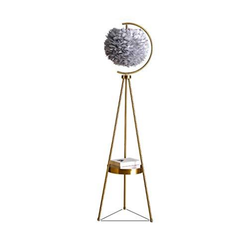 Iron Tripod Staande lamp met gehard glas Plank Feather Statief Permanent Licht for de woonkamer, slaapkamer, studeerkamer en Office, met E27 Base