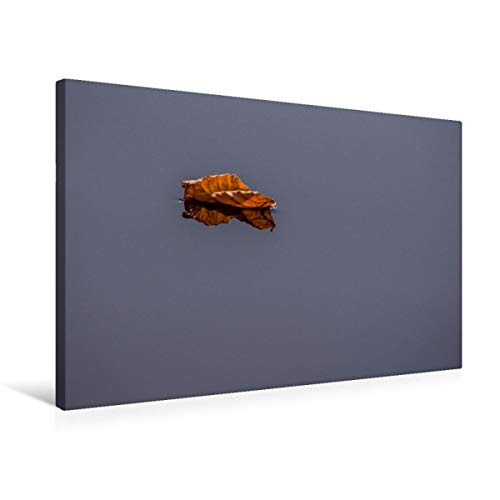 Calvendo Premium textiel canvas 75 cm x 50 cm dwars, geperforeerd blad op water | muurschildering, afbeelding op spieraam, klaar schilderij op echt canvas. en je spiegelend natuur