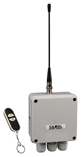 ETERO RWS-211D/N Funkschalter Set mit Sender, 2-Kanal, 1 Stück