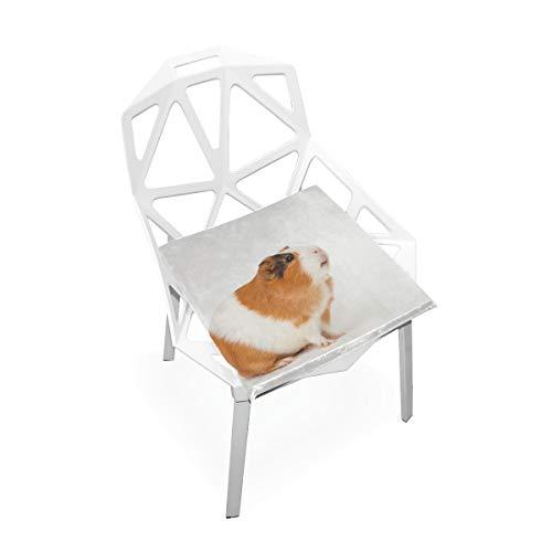 Kawaii Nette Meerschweinchen Familie Benutzerdefinierte Weiche rutschfeste Quadratische Memory Foam Chair Pads Kissen Sitz Home Kitchen Esszimmer Büro Rollstuhl Schreibtisch Holz Möbel 16 X 16 Zoll