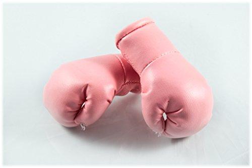 Sportfanshop24 Mini Boxhandschuhe ROSA/PINK hell, 1 Paar (2 Stück) Miniboxhandschuhe z. B. für Auto-Innenspiegel