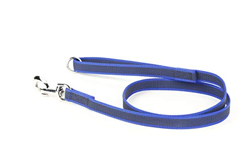Julius-K9 216GM-B-1.2HS Color & Gray Correa de Perro del Estupendo-Apretón con Asa y Aro Tórico, 20 mm x 1.2 m, Azul y Gris