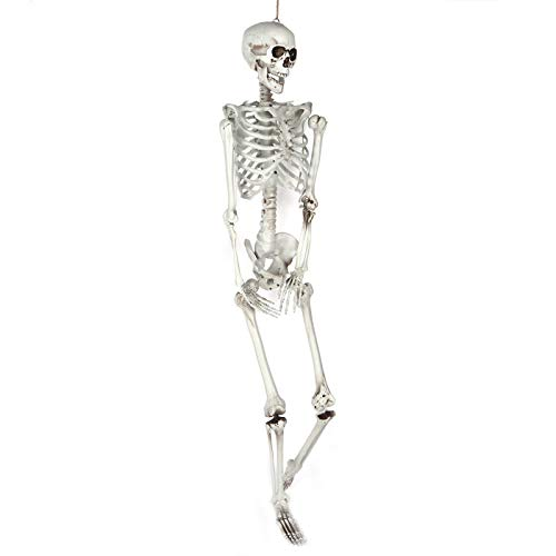 Decoração de crânio durável, esqueleto de resina, estabilidade aterrorizante para cenas de cemitérios domésticos(large)