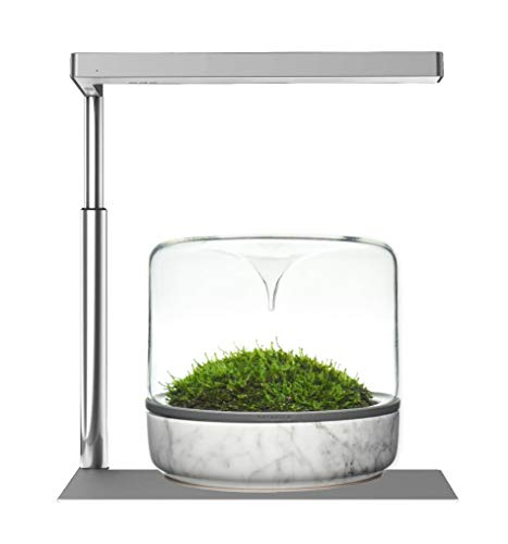 ONF Flat Nano Plant Light with Stand, White LED, Dimmable Full Spectrum for Indoor Plant Grow with Extendable Bracket Fixture, Lamp for 2 to 9 gallons Freshwater Fish Tank, Silver