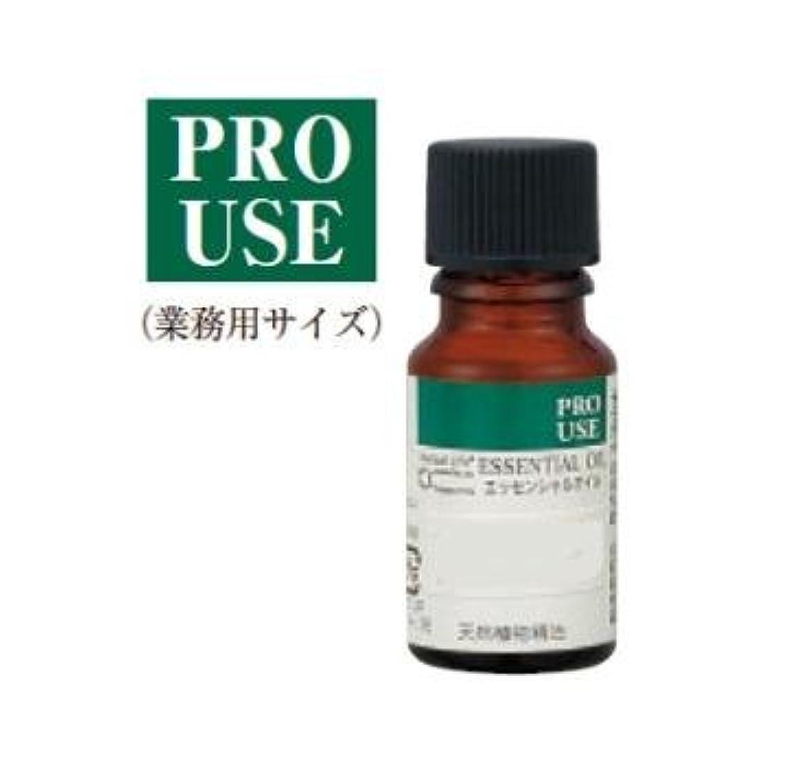 ホールドオール馬鹿げた嫌な生活の木 ジャスミンAbs.10ml エッセンシャルオイル/精油