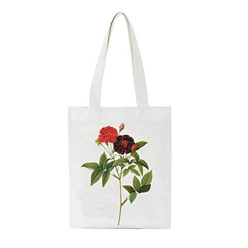huiteng Bolsas de la compra Bolsa de regalo, resistentes y reutilizables, bolsas plegables para la escuela, trabajo, compras, viajes (B)