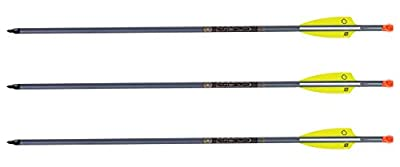 Tenpoint XX75 Magnum 20-Inch 2219 Easton Aluminum Crossbow Arrows