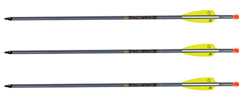TenPoint XX75 Aluminum Crossbow Arrows with Omni Nocks...
