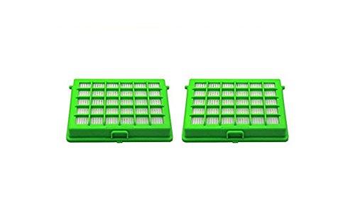 Green Label 2er-Pack HEPA Filter für Rowenta Compacteo Ergo und City Space und Moulinex Compacteo Ergo, City Space und Accessimo Staubsauger (Vergleichbar mit ZR 004501)