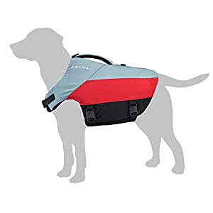 Astral BirdDog Dog Life Jacket PFD for Swimming and Water Play, Hound Gray, XL