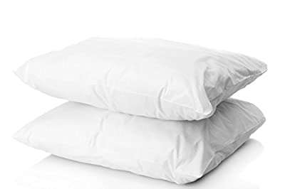 Digital Decor Set of Two (2) Premium Gold Hotel Pillows for Sleeping, Down Alternative, Hypoallergenic, Dust Mite Resistant, Plus 2 Free Pillowcases