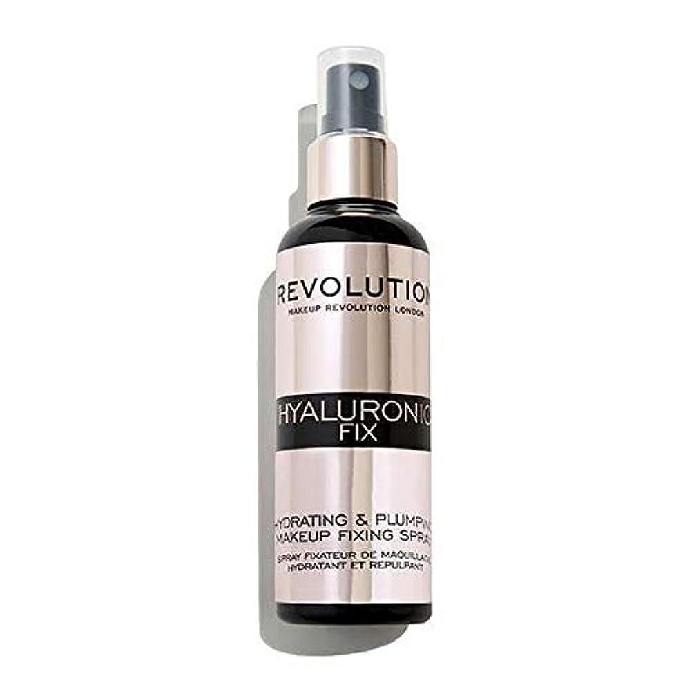 厚い米ドル腸[Revolution ] 化粧革命ヒアルロン固定スプレー - Makeup Revolution Hyaluronic Fixing Spray [並行輸入品]