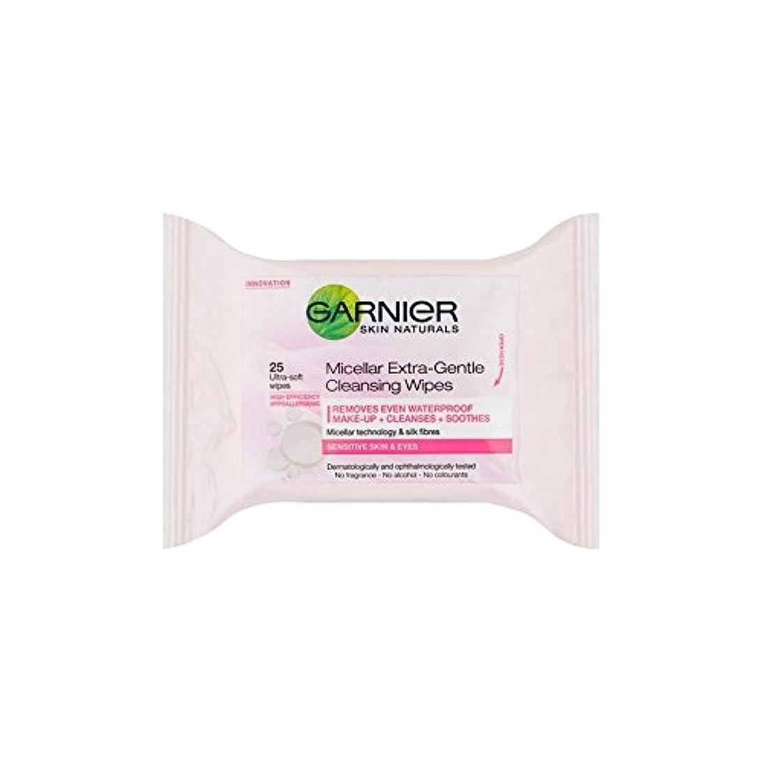 貯水池アグネスグレイハンディキャップGarnier Skin Naturals Micellar Extra-Gentle Cleansing Wipes (25 Pack) - ガルニエ肌ナチュラルミセルエクストラジェントルクレンジングワイプ(25パック) [並行輸入品]