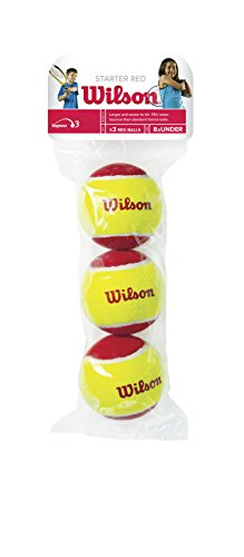 Wilson US Open Tennis Ball - 3 Ball Can
