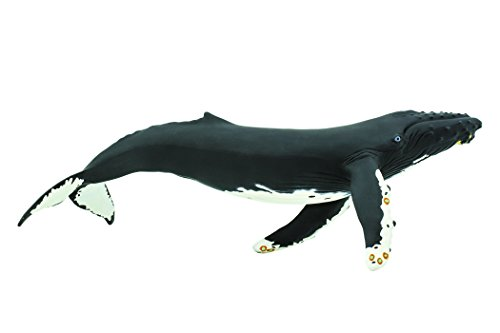 Safari Ltd Monterey Bay Aquarium Sea Life Humpback Whale