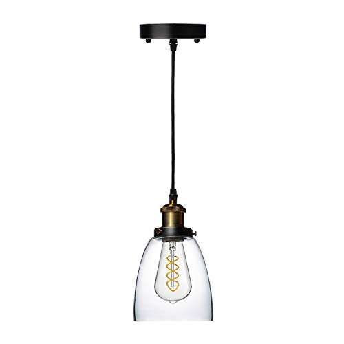 FLSNT Retro Glass Pendant Light Fixture with Clear Glass lampshade and...