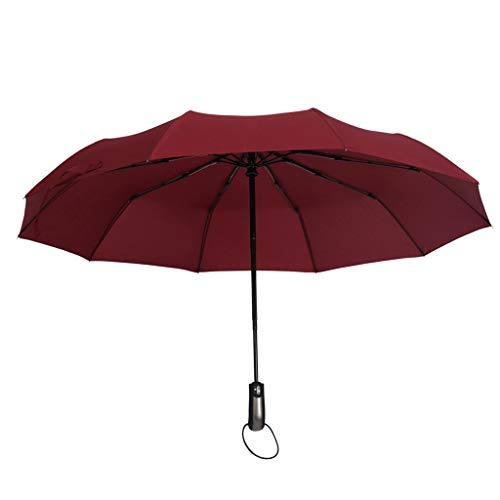 SDENSHI Regenschirm Auf-Zu-Automatik Partnerschirm stabil groß 104cm sturmsicher Taschenschirm Kompaktschirm für Erwachsene Kinder - Wein Rot