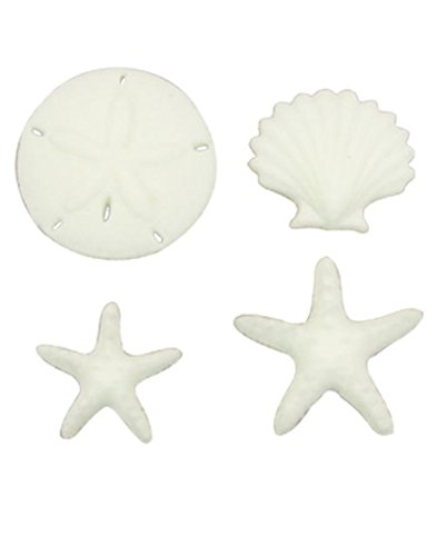 Beachcomber Asst. Sea Shell Sand Dollar Star Fish Decorations Sugar Topper Celebrate Cup Cake Cake Cookie toppers 12 count