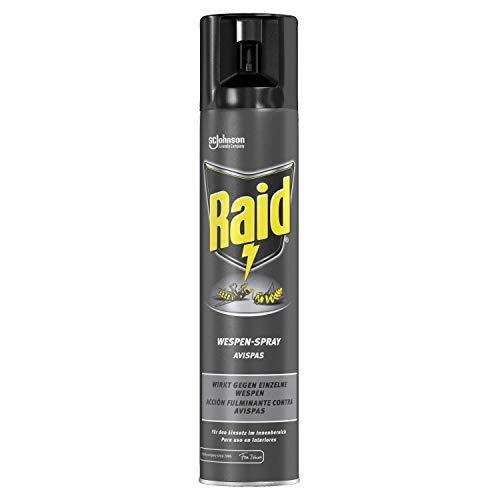 Raid - Insecticida para avispas en spray, acción fulminante, uso interior, aerosol 300 ml