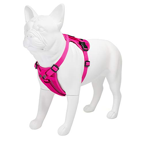 Voyager Freestyle 4-in-1 Dog Harness - Patent Pending Adjustable Webbing Harness with Removable Padding for Small to Large Dogs by Best Pet Supplies (Fuchsia, Small) (216-FU-S)