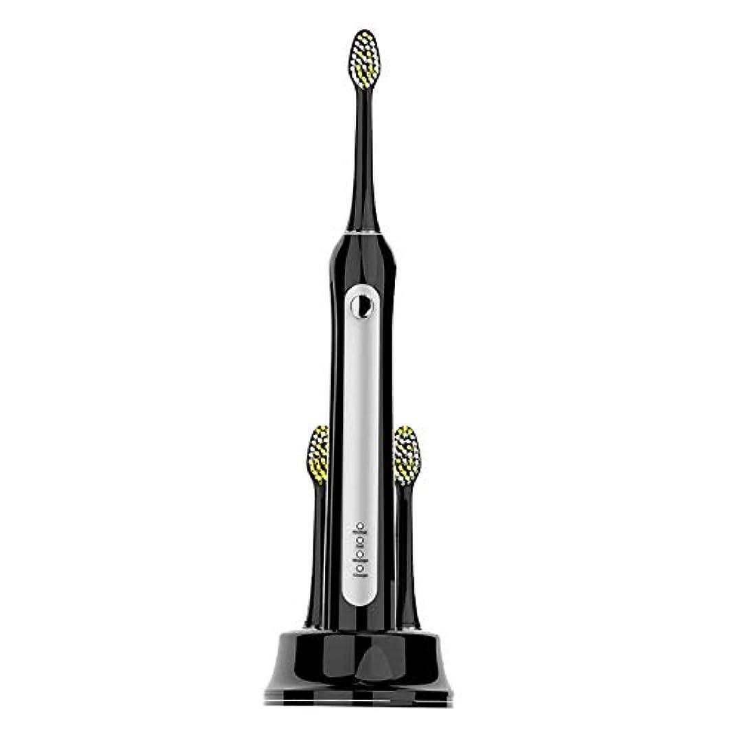 グリルスペース親LMCYP 滅菌機能付き保護用クリーン電動歯ブラシ、3種類のクリーニングモード、内蔵2分タイマー、30秒ゾーンアラーム、セキュアワイヤレスインダクティブ充電、IPX7防水、大人用 (色 : ブラック)