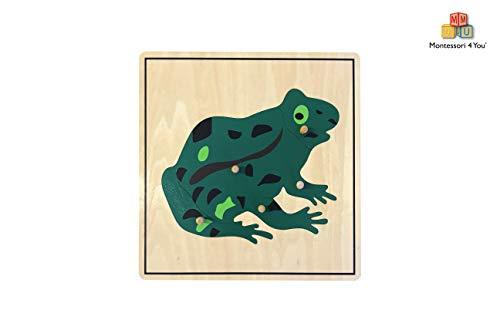 Montessori4You Puzzle de Rana