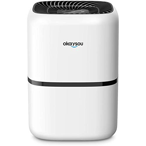 Okaysou AirMic4S Medical Grade Air Purifier for Home Allergies and Pets, Smokers, Odors, Dust, Pollen,VOCs, 4 Optional HEPA H13 Filters, Air Purifiers Cleaner for Large Room Bedroom, 300 Sq. Ft.