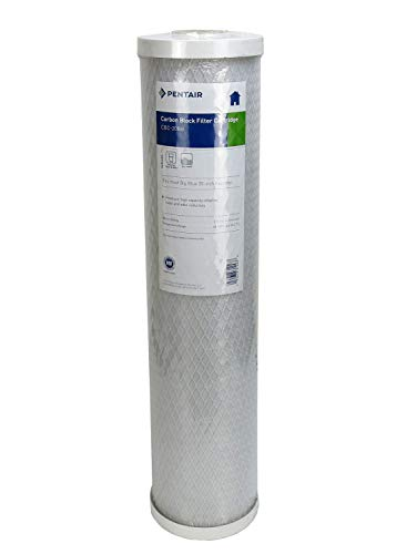(Package Of 2) Pentek CBC-20BB Cyst Reduction Water Filters (20' x 4-5/8')