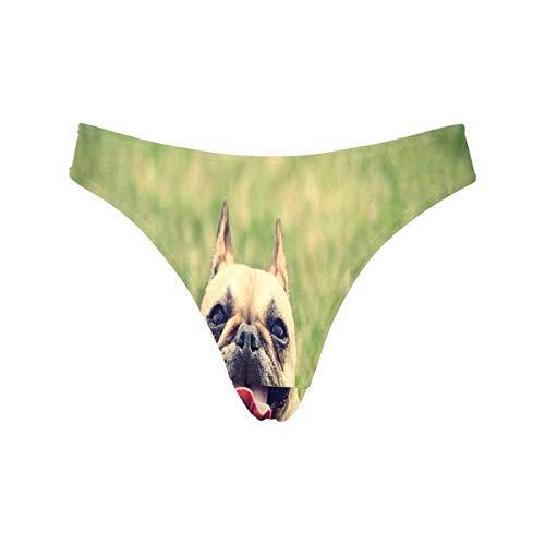 InterestPrint Women's Classic Thongs French Bulldog Green Grass Breathable Underwear Panties M