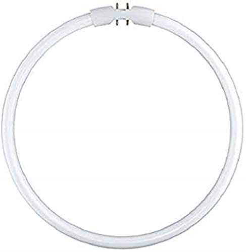 Leuchtstofflampe FC 22 Watt 830 warmweiß 2GX13 Circular Ringlampe - Osram 22W