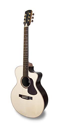 APC Instruments EA Luthier CW (met koffer) elektrische akoestische gitaar