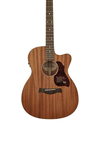 RICHWOOD A-50-CE - Guitarra acústica preamplificada