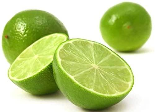 150 Pezzi Limone Semi Alberi da frutto all'aperto in vaso Piantare in casa Semi di lime perenni...