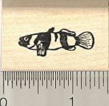 Bumblebee Goby Fish Rubber Stamp