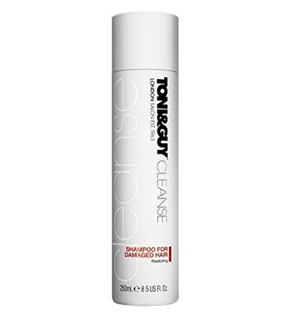 アシュリータファーマンもちろんマダム傷んだ髪の250ミリリットルのためのトニ&男クレンジングシャンプー (Toni & Guy) (x2) - Toni&Guy Cleanse Shampoo for Damaged Hair 250ml (Pack of 2) [並行輸入品]
