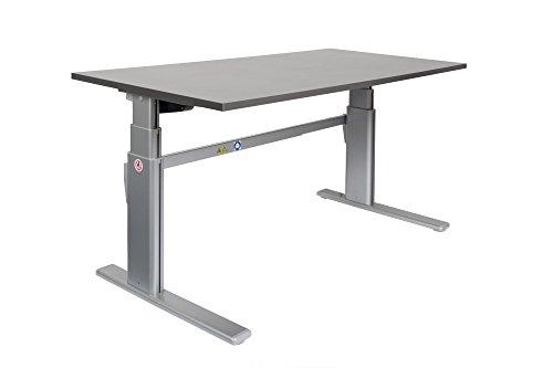 Dila GmbH Ergonomischer Schreibtisch elektrisch höhenverstellbar | höhenverstellbarer Bürotisch Workstation Arbeitstisch Bürotisch Büromöbel (120 x 80 cm, Weiß)
