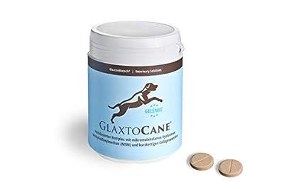 GlaxtoCane® Gelenk-Kautabletten für Hunde mit Hyaluronsäure Kollagen-Peptide & MSM hochdosiert I Hunde Nahrungsergänzungsmittel Gelenke Tabletten + Vitamine+Mineralstoffe 120Stk Gelenk Supplement