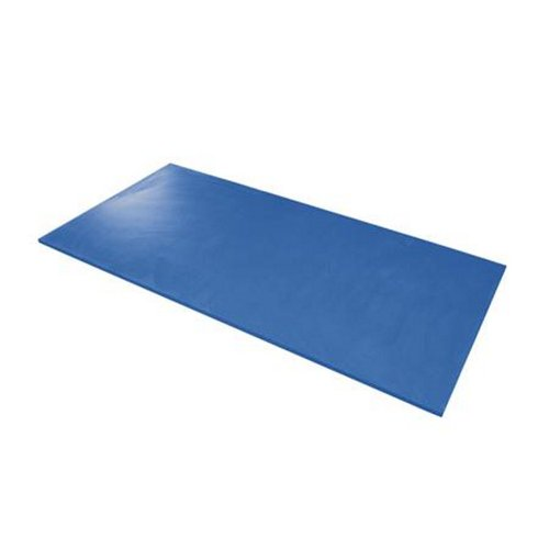 Preisvergleich Produktbild Airex Hercules Gymnastikmatte / Matte für Rehabilitation (blau)