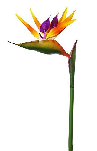 artplants.de Strelizia Artificiale LATIFA, Arancione, 80cm - Ramo Fiorito/Strelizia Finta