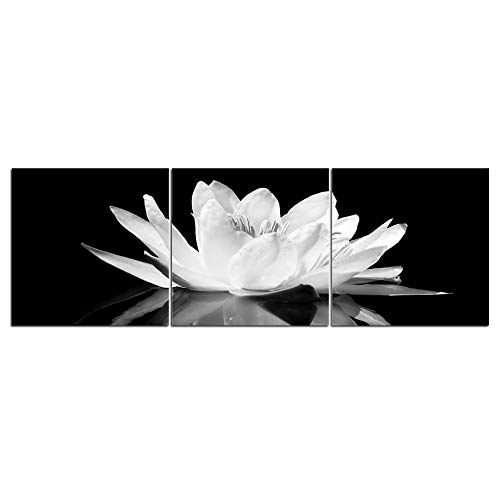 Wenjing 3 stuks abstracte zwart en wit bloem bloem plaats canvas schilderij print op canvas muurkunst modulaire afbeeldingen voor de woonkamer 30 x 30 cm x 3 stuks geen lijst