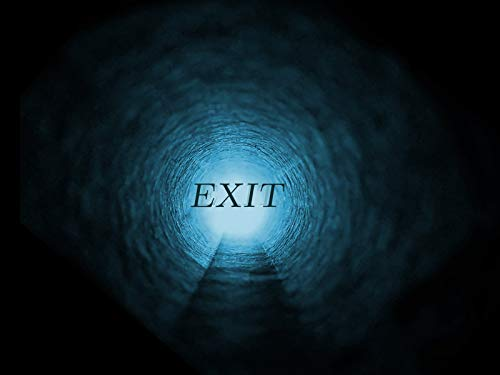 EXIT: The Exit Bag Method (English Edition)