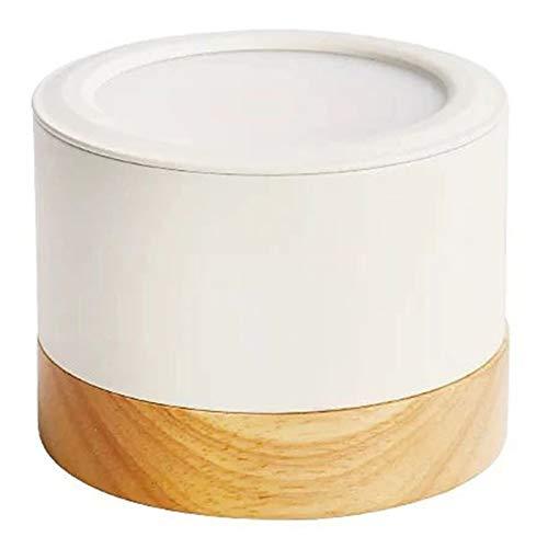 FLAUU Led Lámpara De Techo Moderno Plafón De Techo Mini Estilo Metal Acrílico Madera Acabados De Pintura Geométrica Downlight para La Sala De Estar Dormitorio Estudio Corredor Guardarropa,White Light