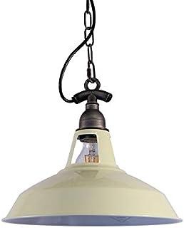 Amazon.es: floron lampara techo